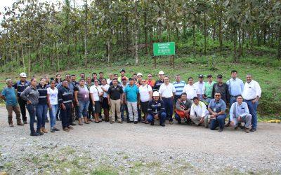 Alianza verde:  HEMCO y mineros artesanales reforestarán puntos de trabajo