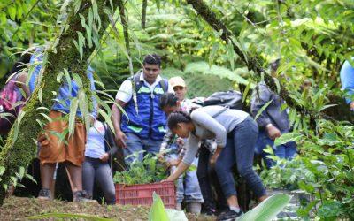 Presidentes de cooperativas y estudiantes participan en jornada de reforestación